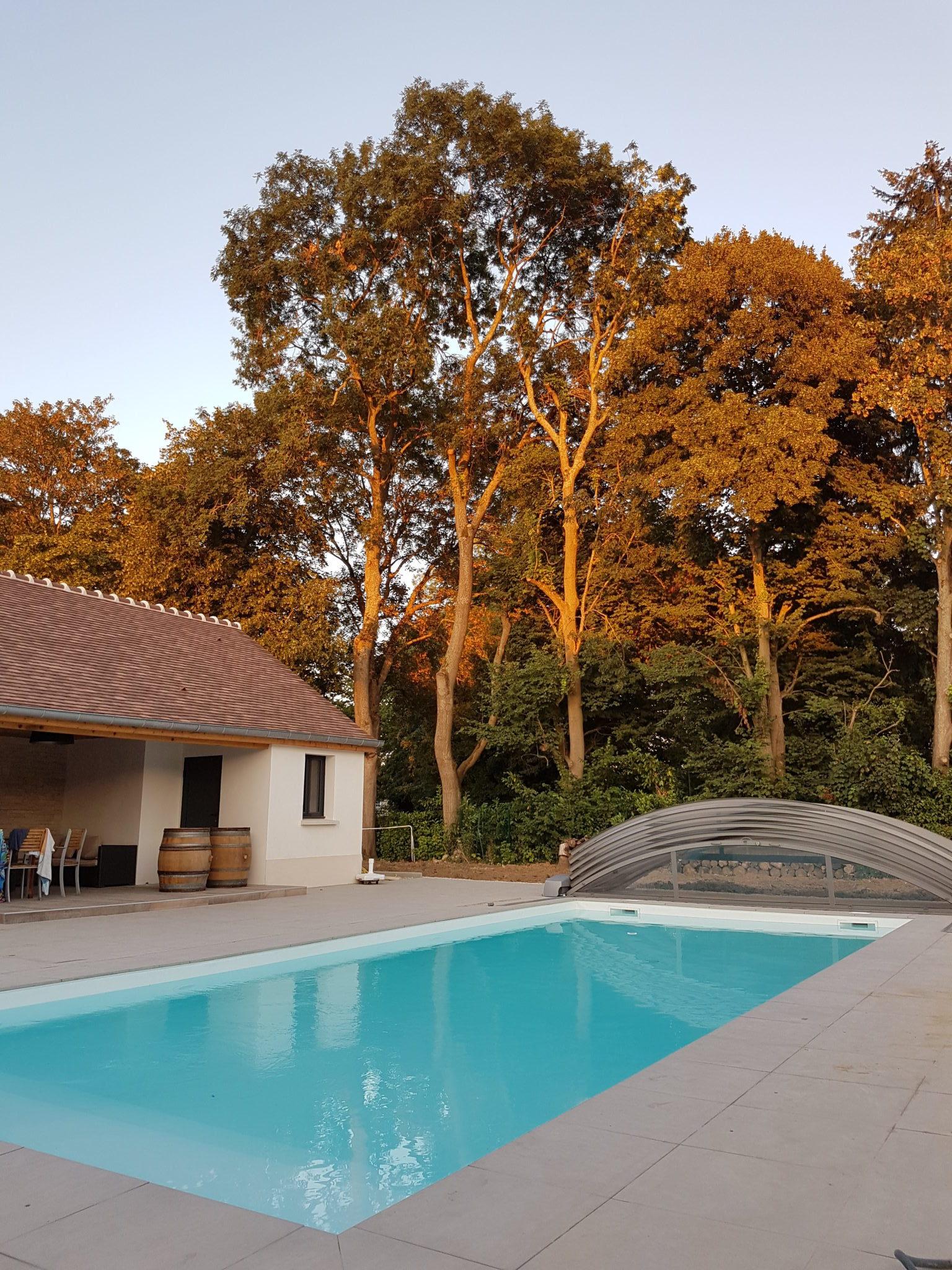 Photo en couleur d'une piscine d'une maison moderne proche d'une foret en campagne parisienne
